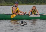 2 Day Algonquin Park Glamping Camping - Canoe & Bicycle Extravaganza