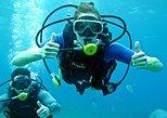 Cozumel Scuba Diving at Chankanaab -1 Tank