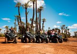 Camel Ride and Quad Biking Tour from Marrakech City with Moroccan Lunch