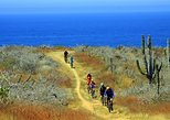 Mexico - Baja California Sur: Los Cabos Mountain Bike Adventure and Eco-Farm