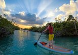 Nature sunset SUP Tour: Mangrove Route