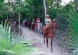 Horseback Riding Tour from Cancun