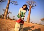 Baobab & Tsingy of Bemaraha!