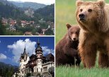 2 Days Private Transylvania Tour:Peles& Dracula's Castle, Prejmer&Bear Sanctuary