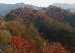 Airport Layover Tour: Mutianyu Great Wall and Forbidden City Private Tour