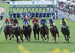 Horse Racing with Crown lodge