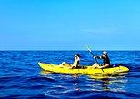 Morning Magic - Kealakekua Bay Kayak and Snorkel Adventure