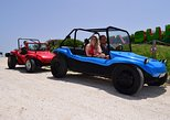 Mexico - Cozumel: Dune Buggy Tour and Snorkeling at Punta Sur Including Lunch