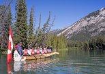 Wildlife on the Bow Big Canoe Tour