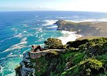 Full-day Cape Peninsula and Boulders Beach Penguins Private Tour from Cape Town