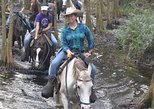 enjoy a horseback adventure at forever florida eco-reserve