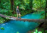 From San Jose: Tour to Rio Celeste and the Hot Springs