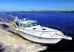 All inclusive half day Luxury boat charter to Icacos from San Juan