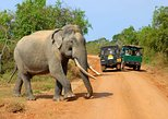 Adventure Tour in Sri Lanka (17 Days)