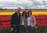 Skagit Valley Tulip Festival, Wine & Local Food Tour