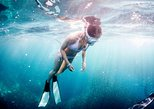 Basic Freediver: an Introduction to Freediving