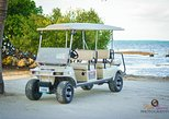 AVIS (6 Person) Cart Rental San Pedro, Belize