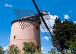 Wind Mill Visit and Olive Oil Tasting