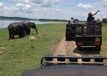 Day Excursion to Sigiriya, Pidurangala Rock & National park safari from Kandy
