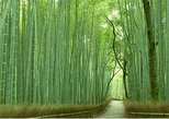 Sagano Bamboo Grove and Arashiyama Morning Walking Tour