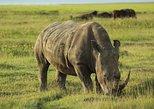 3-Day Authentic Mara Safari