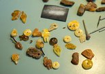 Amber Workshop - Ancient Sea Treasures at Your Hand