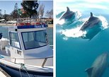 From Olhão, full day tour: Dolphins searching & 3 Islands boat trip