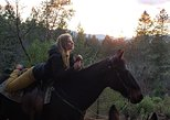 Horseback Riding, Trail Adventures