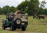 Udawalawe National Park Private Safari from Mirissa