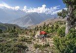 1 Day Kathmandu Valley Biking Tour (Hills, National Parks, Monasteries)