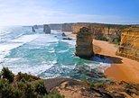 Ruta ecoturística en grupo pequeño por la Gran Carretera Oceánica desde Melbourne. Melbourne, AUSTRALIA