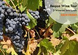 Beqaa Wine - 3 Wineries Tour & Tasting with Lunch