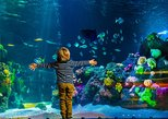 AquaDom & SEA LIFE Berlin Admission Ticket
