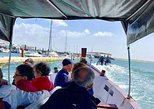 From Olhão, sightseeing 1h30m boat tour in Ria Formosa in a small group