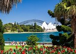 Sydney Ultimate Luxury - Half Day Private Tour