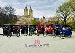 USA - New York: Central Park: geführte Rischka-Tour