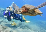 GROUP Intro Scuba Diving - 28 Years of Experience - Awesome Shore Dive *Book Now