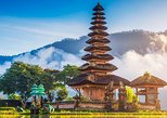 21 Day Weight Loss Retreat in Bali