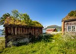 Small-group Arctic Landscapes Sightseeing - Summer Shore Excursion from Tromso