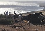 Caribbean - Aruba: PRIVATE SUNSET Horseback ride