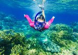 Snorkeling and speed boat tour in the Karaburun-Sazan Marine Park