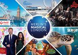 Big Adventures 6 Attraction Ticket Including Madame Tussauds, SEA LIFE Aquarium, London Eye, Shrek's Adventure! London and The London Dungeon