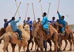 4 day Gobi Desert Tour-All included