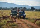 4Days Masai Mara safari
