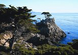 Day Trip to Monterey and Carmel via California Coast