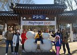 Private Full Day tour to Nami Island & Petite France