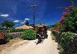 Taketomi Island Water Buffalo Cart & Bike Rental from Ishigaki