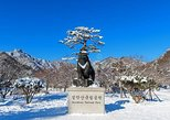 Discover Korea Coach Tour ( 2days Seoul - Mt Soerak)
