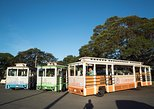LeaLea Trolley GOLD PASS (7-day) Unlimited rides on ALL including Double Deckers