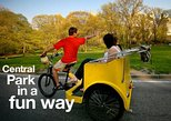 Deluxe 2 hours Central Park Pedicab Tour